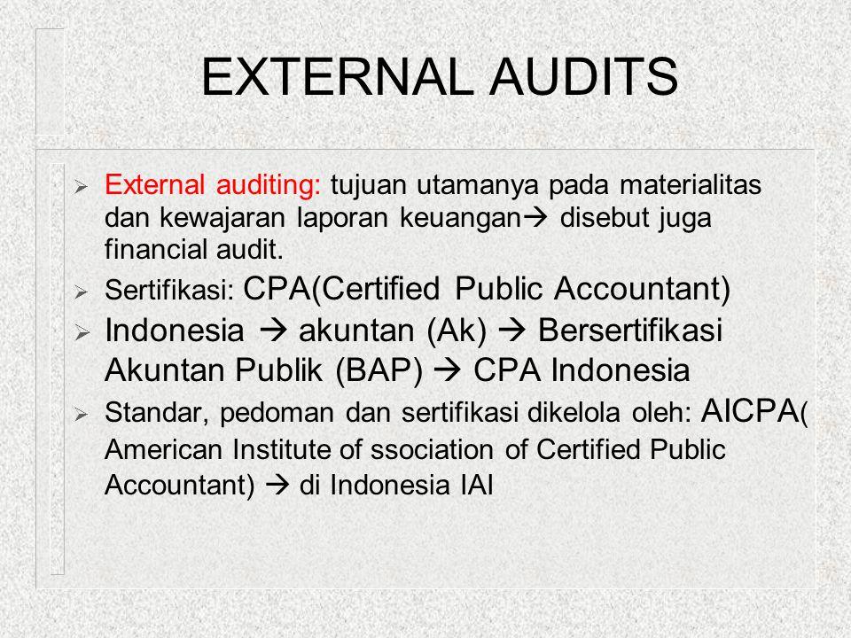 Audit Around The Computer n Seperti audit manual n Hanya memeriksa input dan output saja, tanpa pemeriksaan lebih dalam terhadap penggunaan program.