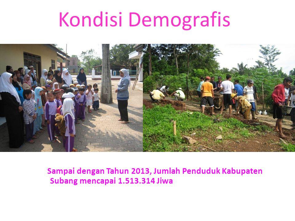 Kondisi Demografis Sampai dengan Tahun 2013, Jumlah Penduduk Kabupaten Subang mencapai 1.513.314 Jiwa