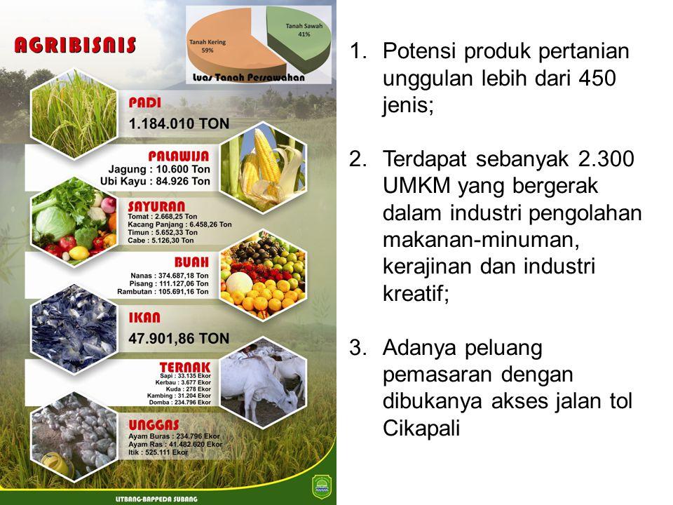 1.Potensi produk pertanian unggulan lebih dari 450 jenis; 2.Terdapat sebanyak 2.300 UMKM yang bergerak dalam industri pengolahan makanan-minuman, kera