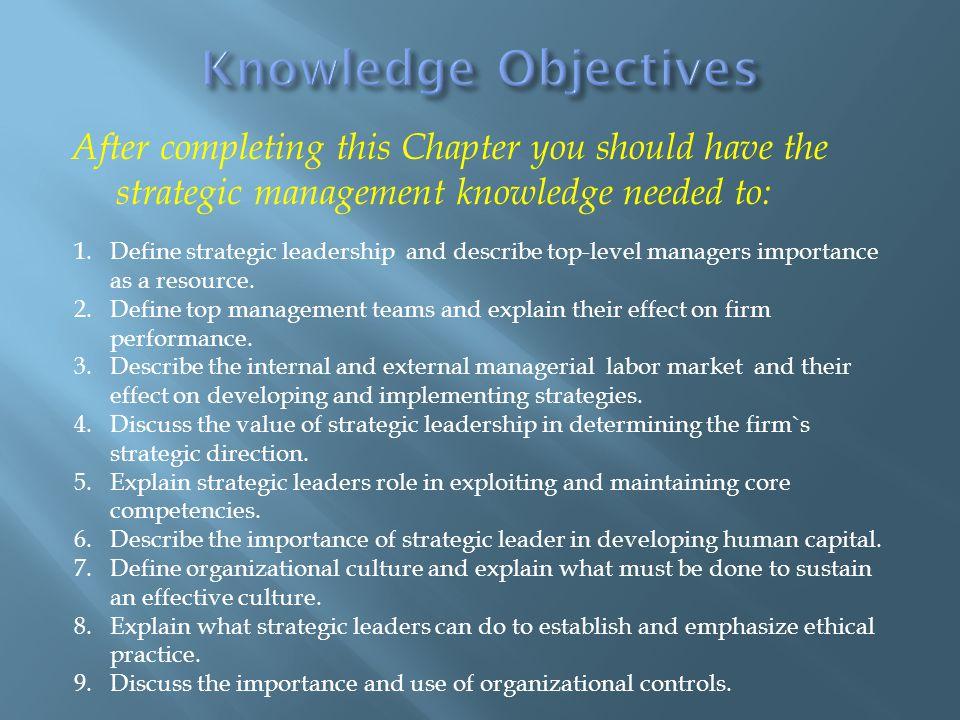 Pengaruh-pengaruh atas kesuksesan CEO dan komposisi tim manajemen puncak pada strategi dapat ditarik hubungan sebagai berikut;  Keberhasilan strategi bertahan ( Stable Strategy ) bergantung pada kesuksesan CEO internal dan keserbasamaan ( homogeneous ) komposisi tim manajemen puncak.