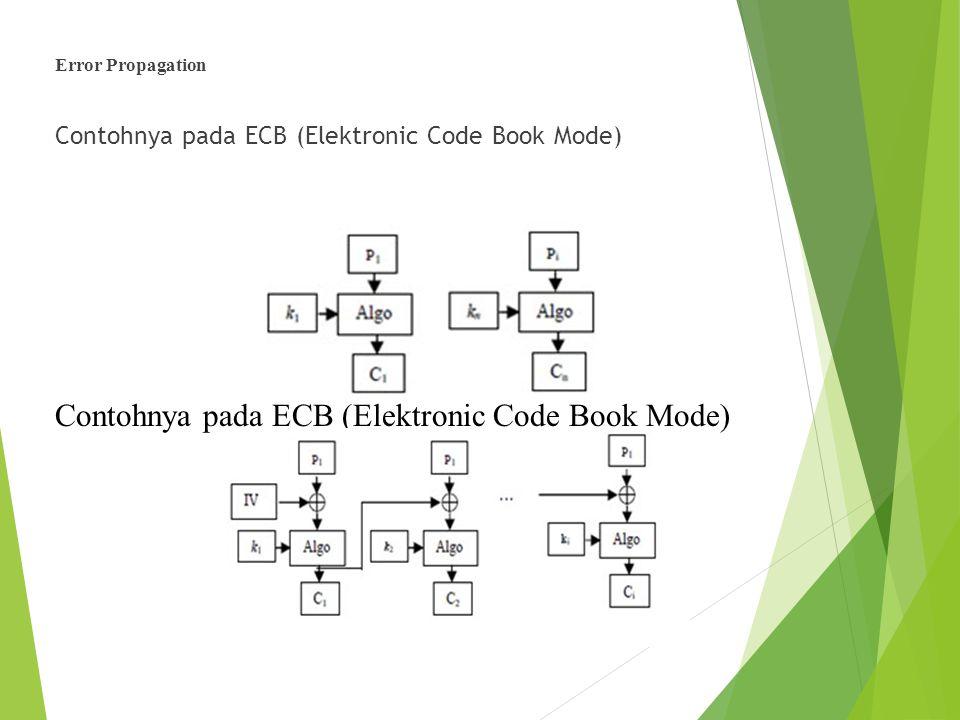 Error Propagation Contohnya pada ECB (Elektronic Code Book Mode) 19 Contohnya pada ECB (Elektronic Code Book Mode)