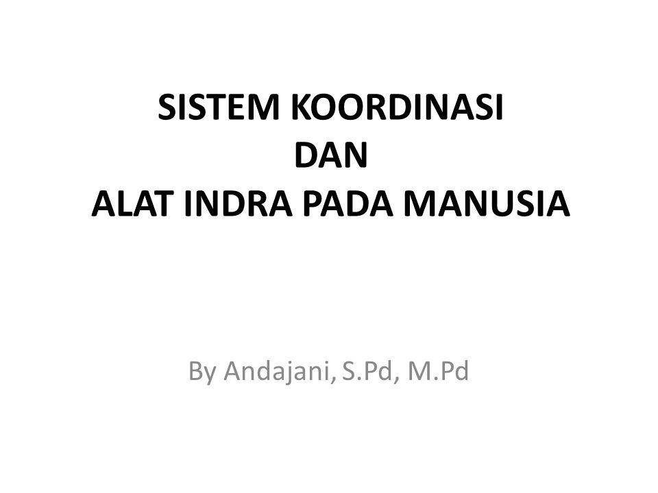 SISTEM KOORDINASI DAN ALAT INDRA PADA MANUSIA By Andajani, S.Pd, M.Pd