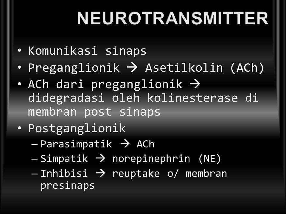 Komunikasi sinaps Preganglionik  Asetilkolin (ACh) ACh dari preganglionik  didegradasi oleh kolinesterase di membran post sinaps Postganglionik – Pa