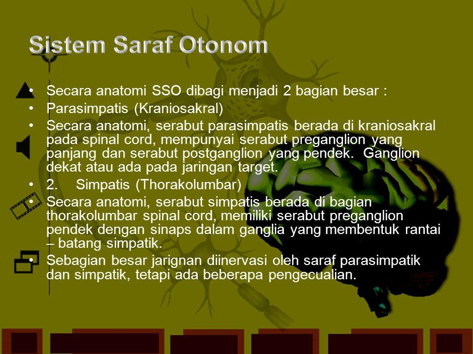 Sistem SarafSistem Saraf PeriferSistem Saraf OtonomSistem Saraf SimpatisSistem Saraf ParasimpatisSistem Saraf SomatikSistem Saraf Pusat