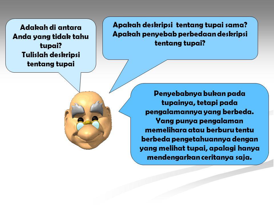 Adakah di antara Anda yang tidak tahu tupai? Tulislah deskripsi tentang tupai Apakah deskripsi tentang tupai sama? Apakah penyebab perbedaan deskripsi
