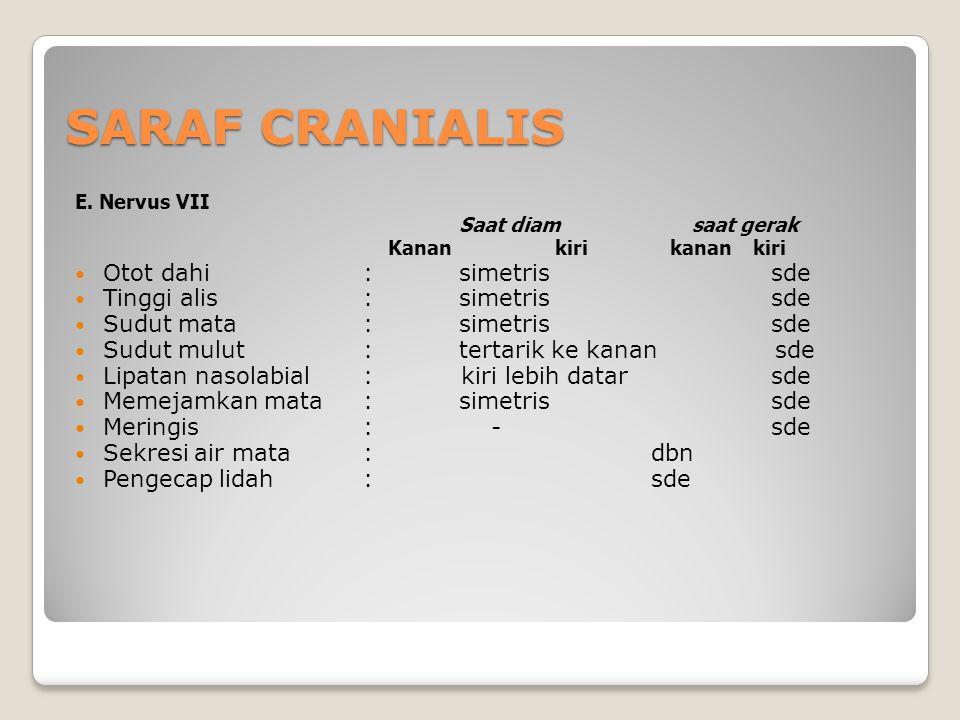 SARAF CRANIALIS E.