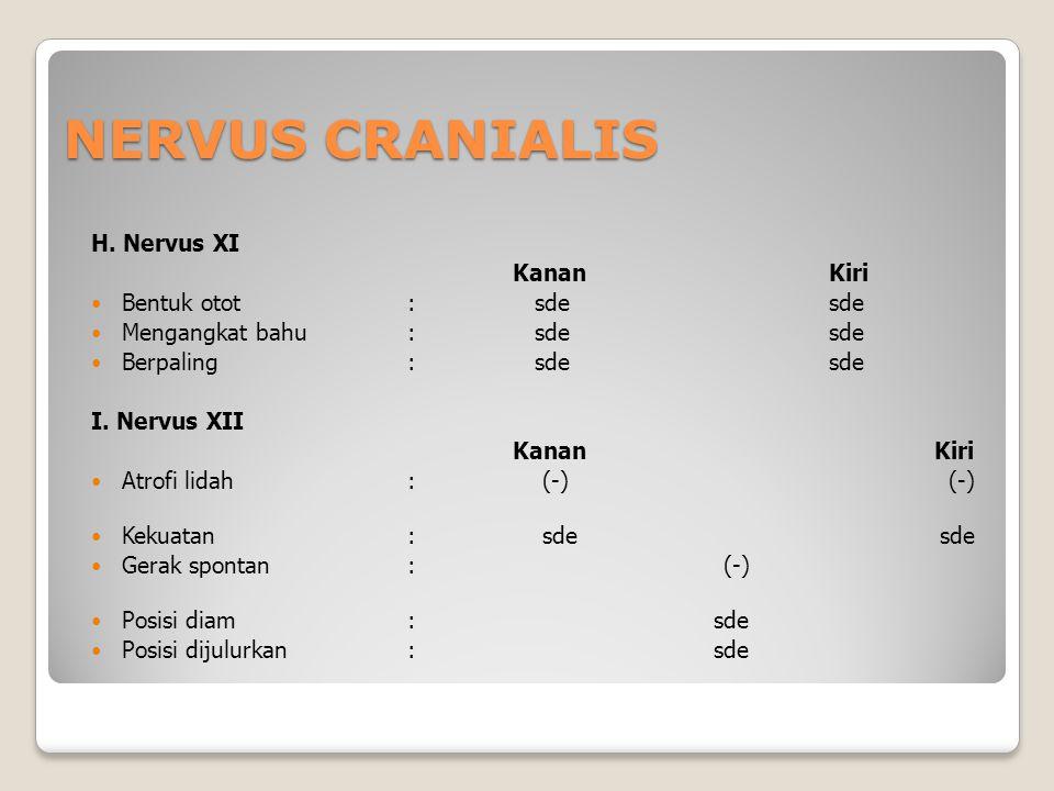 NERVUS CRANIALIS H. Nervus XI KananKiri Bentuk otot: sdesde Mengangkat bahu: sde sde Berpaling: sde sde I. Nervus XII KananKiri Atrofi lidah: (-) (-)