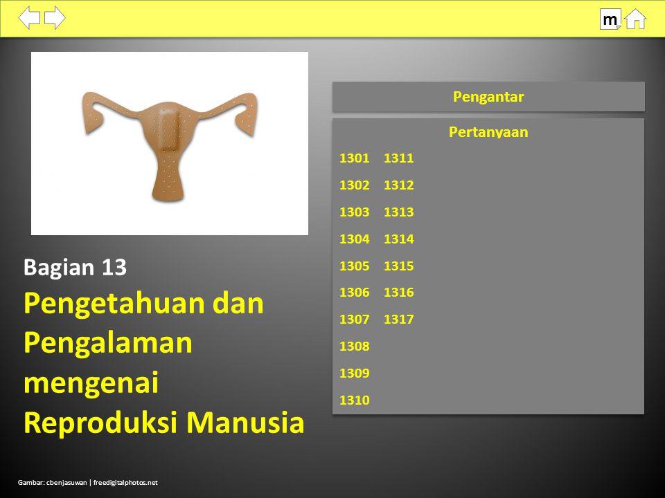 Bagian 13 Pengetahuan dan Pengalaman mengenai Reproduksi Manusia Pengantar Gambar: cbenjasuwan | freedigitalphotos.net m