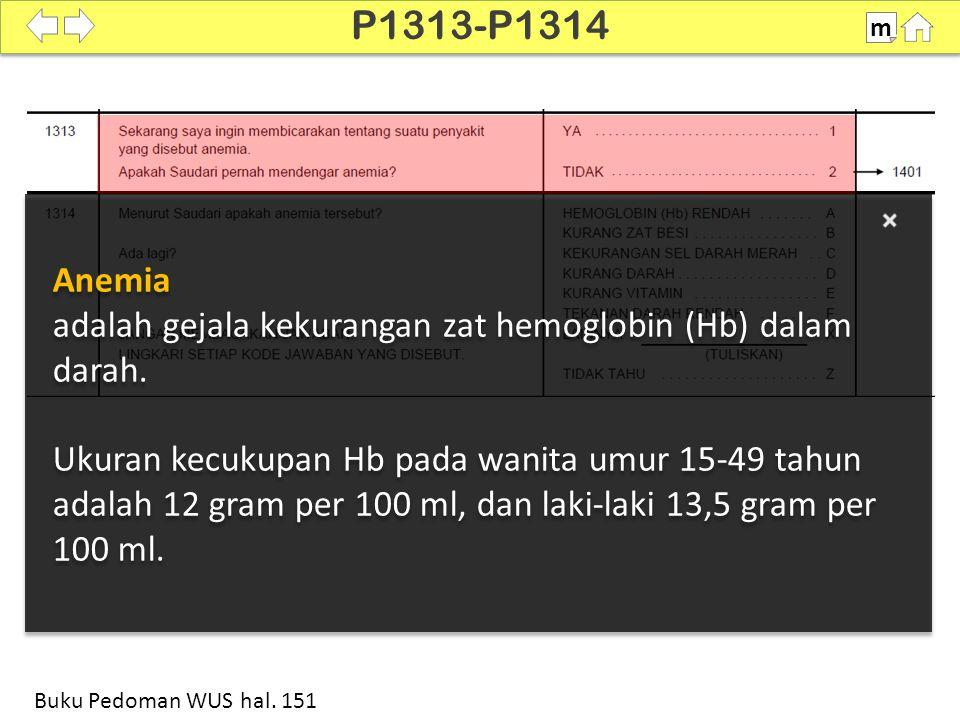 100% P1313-P1314 m Buku Pedoman WUS hal.