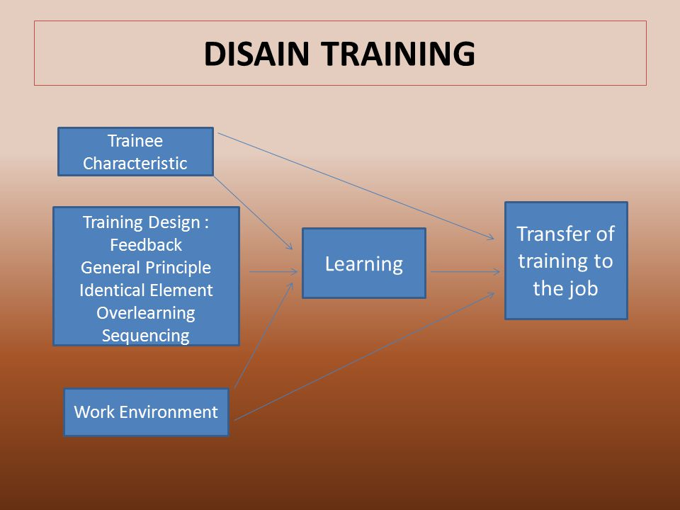 DISAIN TRAINING Trainee Characteristic Training Design : Feedback General Principle Identical Element Overlearning Sequencing Work Environment Learning Transfer of training to the job