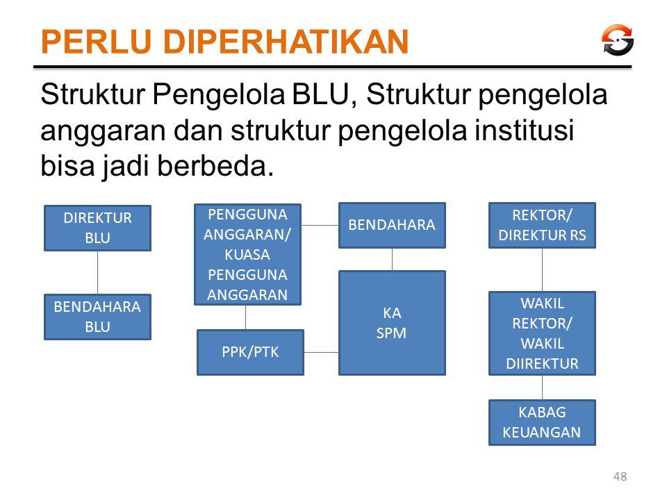 PERLU DIPERHATIKAN Struktur Pengelola BLU, Struktur pengelola anggaran dan struktur pengelola institusi bisa jadi berbeda. 48 DIREKTUR BLU BENDAHARA B