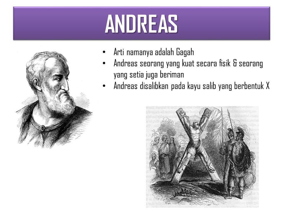 ANDREASANDREAS Arti namanya adalah Gagah Andreas seorang yang kuat secara fisik & seorang yang setia juga beriman Andreas disalibkan pada kayu salib yang berbentuk X