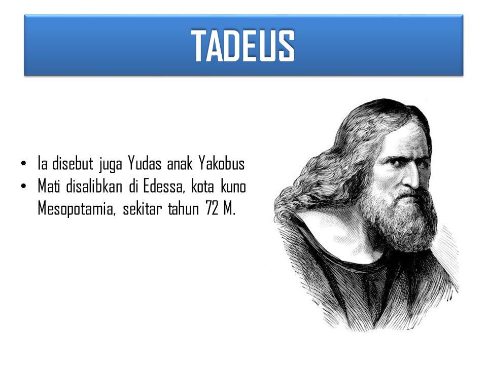 TADEUSTADEUS Ia disebut juga Yudas anak Yakobus Mati disalibkan di Edessa, kota kuno Mesopotamia, sekitar tahun 72 M.