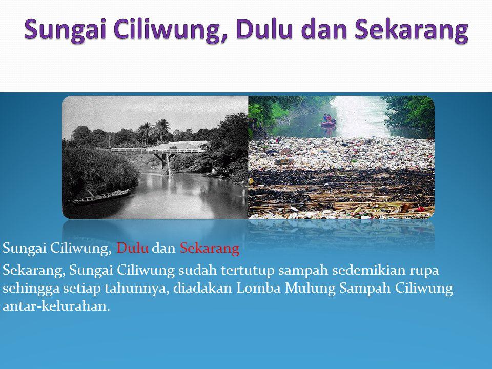 Sungai Ciliwung, Dulu dan Sekarang Sekarang, Sungai Ciliwung sudah tertutup sampah sedemikian rupa sehingga setiap tahunnya, diadakan Lomba Mulung Sam