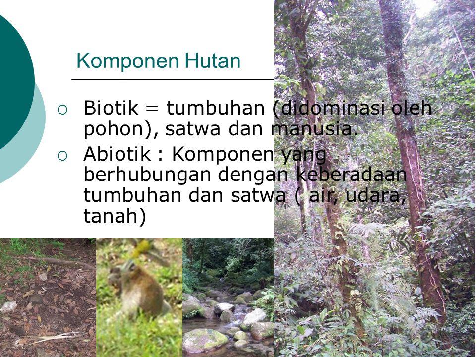 Komponen Hutan  Biotik = tumbuhan (didominasi oleh pohon), satwa dan manusia.  Abiotik : Komponen yang berhubungan dengan keberadaan tumbuhan dan sa