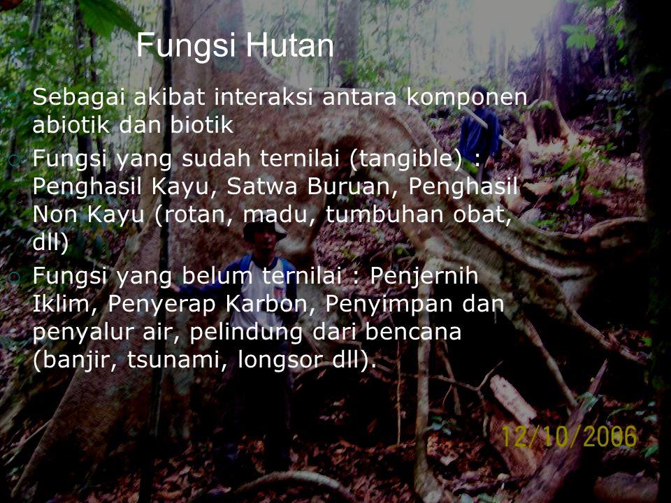 Fungsi Hutan  Sebagai akibat interaksi antara komponen abiotik dan biotik  Fungsi yang sudah ternilai (tangible) : Penghasil Kayu, Satwa Buruan, Pen