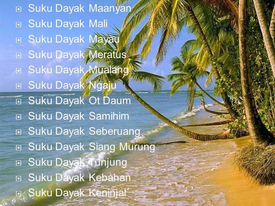  Suku Dayak Maanyan  Suku Dayak Mali  Suku Dayak Mayau  Suku Dayak Meratus  Suku Dayak Mualang  Suku Dayak Ngaju  Suku Dayak Ot Daum  Suku Day
