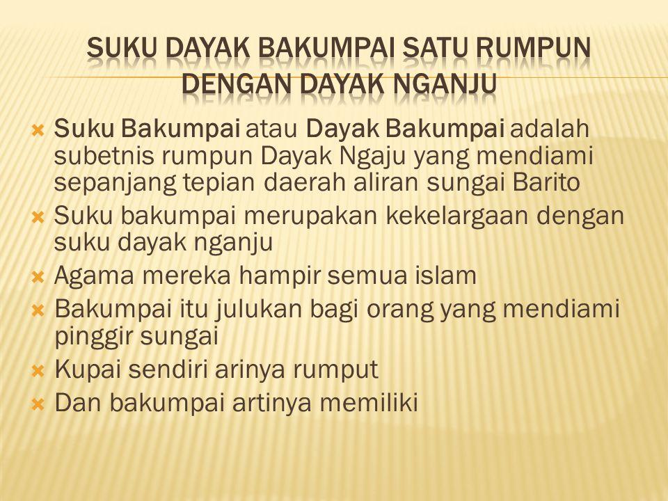  Suku Bakumpai atau Dayak Bakumpai adalah subetnis rumpun Dayak Ngaju yang mendiami sepanjang tepian daerah aliran sungai Barito  Suku bakumpai meru