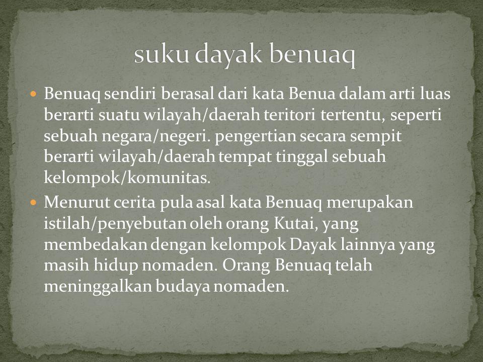Benuaq sendiri berasal dari kata Benua dalam arti luas berarti suatu wilayah/daerah teritori tertentu, seperti sebuah negara/negeri. pengertian secara