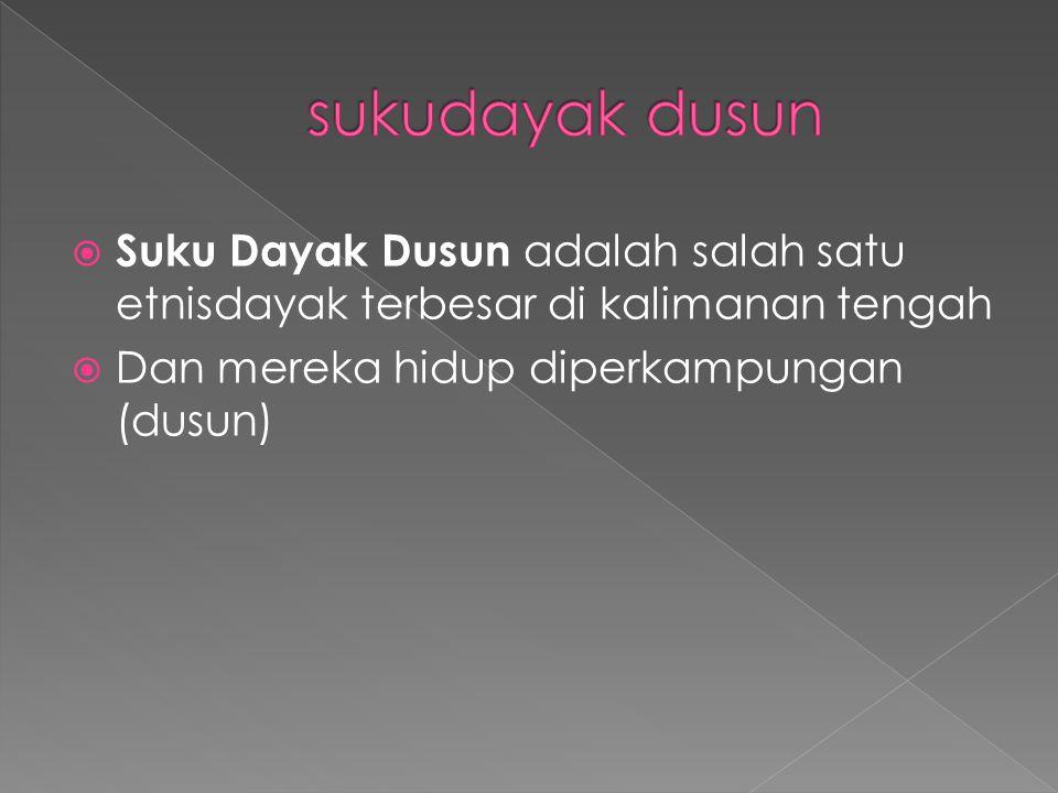  Suku Dayak Dusun adalah salah satu etnisdayak terbesar di kalimanan tengah  Dan mereka hidup diperkampungan (dusun)