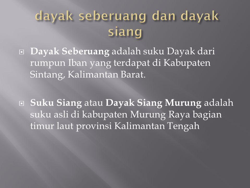  Dayak Seberuang adalah suku Dayak dari rumpun Iban yang terdapat di Kabupaten Sintang, Kalimantan Barat.  Suku Siang atau Dayak Siang Murung adalah