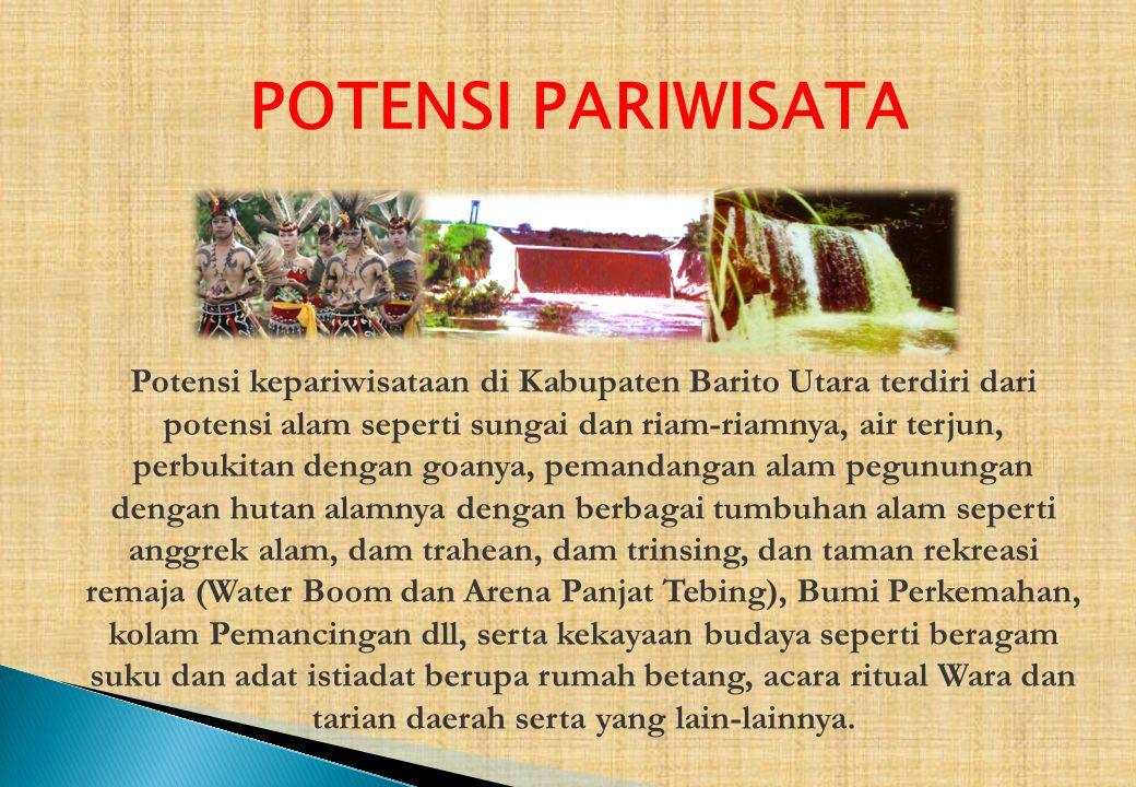 POTENSI PARIWISATA Potensi kepariwisataan di Kabupaten Barito Utara terdiri dari potensi alam seperti sungai dan riam-riamnya, air terjun, perbukitan