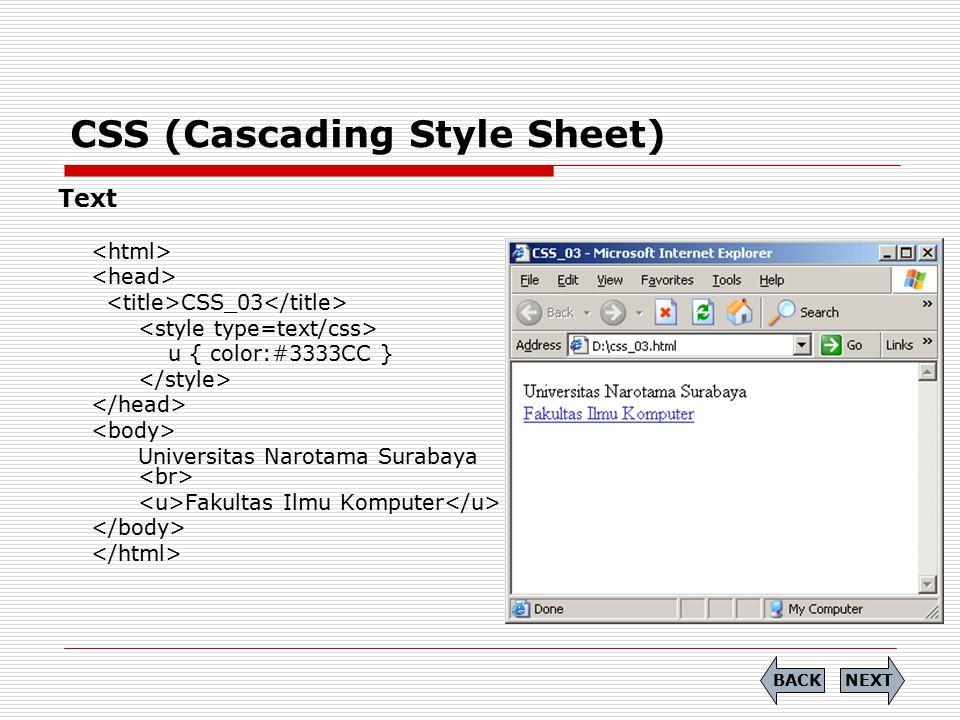 CSS (Cascading Style Sheet) Text CSS_03 u { color:#3333CC } Universitas Narotama Surabaya Fakultas Ilmu Komputer NEXTBACK