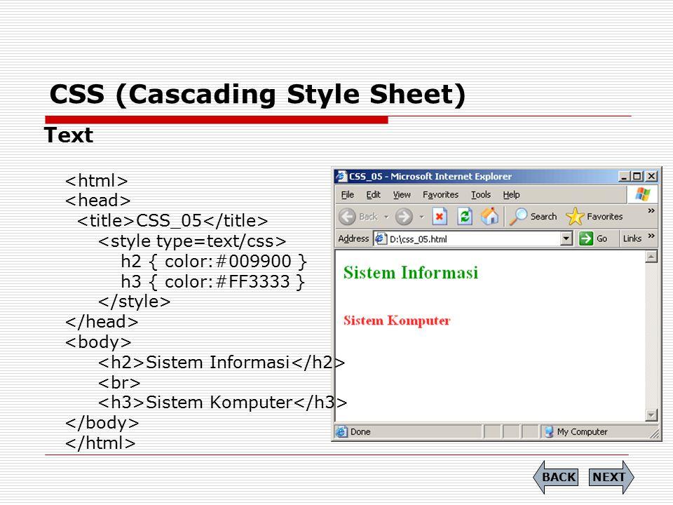CSS (Cascading Style Sheet) Text CSS_05 h2 { color:#009900 } h3 { color:#FF3333 } Sistem Informasi Sistem Komputer NEXTBACK