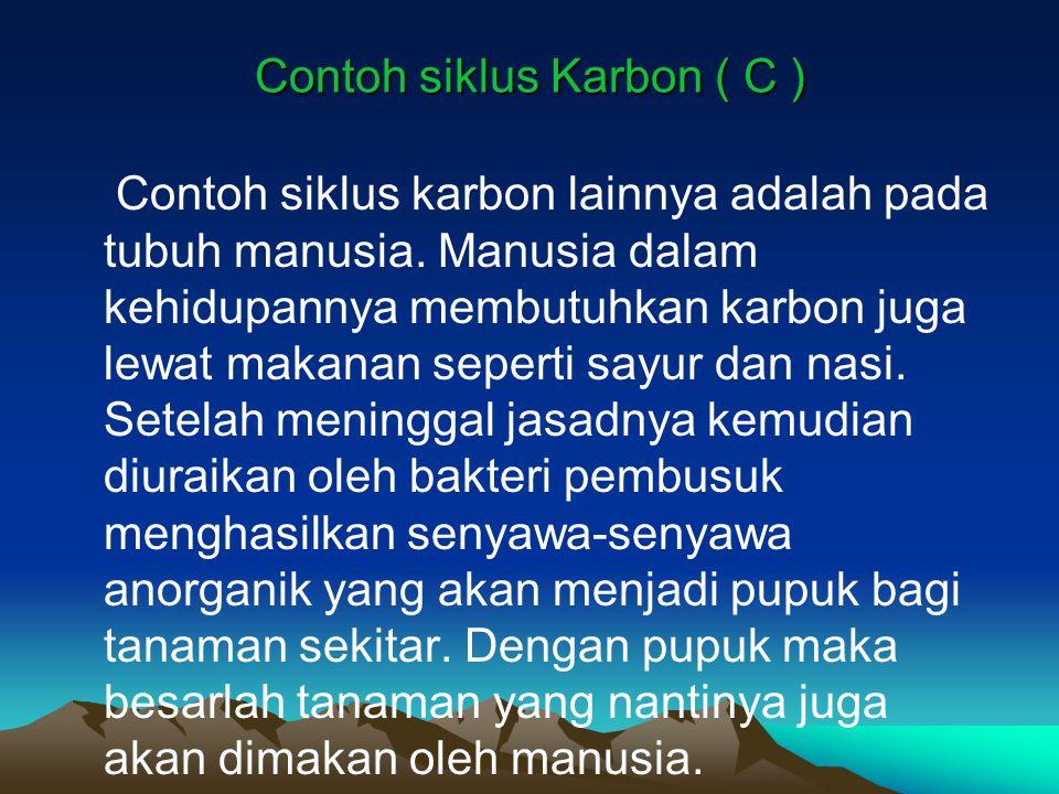 Contoh siklus Karbon ( C ) Contoh siklus karbon lainnya adalah pada tubuh manusia. Manusia dalam kehidupannya membutuhkan karbon juga lewat makanan se