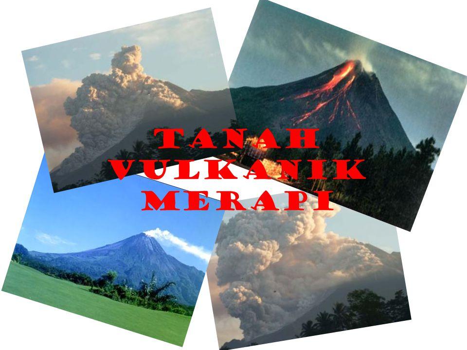 Tanah-tanah yang berkembang dari Abu Vulkan umumnya dicirikan oleh kandungan mineral liat allophan yang tinggi.