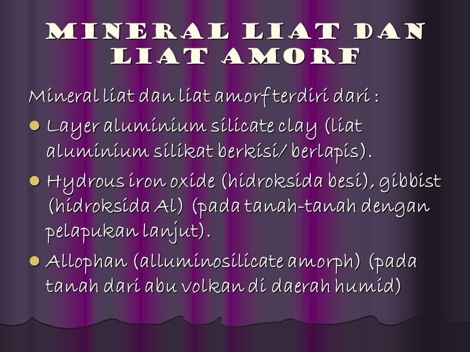 Mineral Liat dan Liat Amorf Mineral liat dan liat amorf terdiri dari : Layer aluminium silicate clay (liat aluminium silikat berkisi/ berlapis). Layer