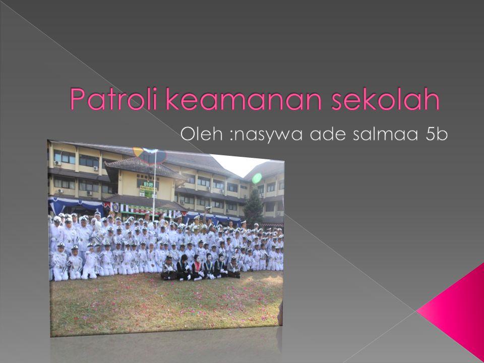  Pks adalah salah satu jenis extrakulikuler yg umum di temui di sekolah sekolah di indonesia