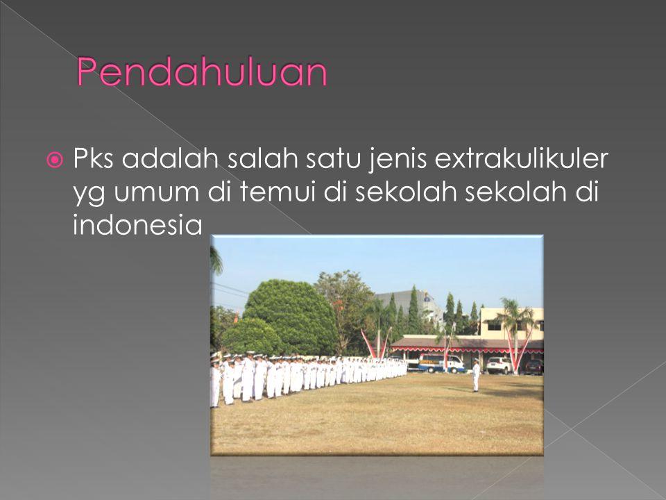  Dalam kegiatan ekstrakurikuler ini, para siswa dilatih menjadi semacam polisi sekolah .