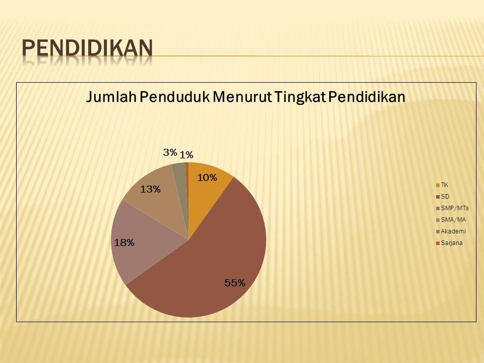 Sebagaian besar penduduk masih besekolah di tingkat SD.