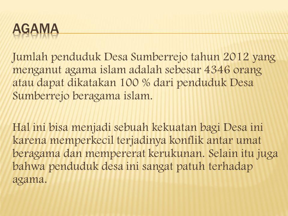 Jumlah penduduk Desa Sumberrejo tahun 2012 yang menganut agama islam adalah sebesar 4346 orang atau dapat dikatakan 100 % dari penduduk Desa Sumberrejo beragama islam.