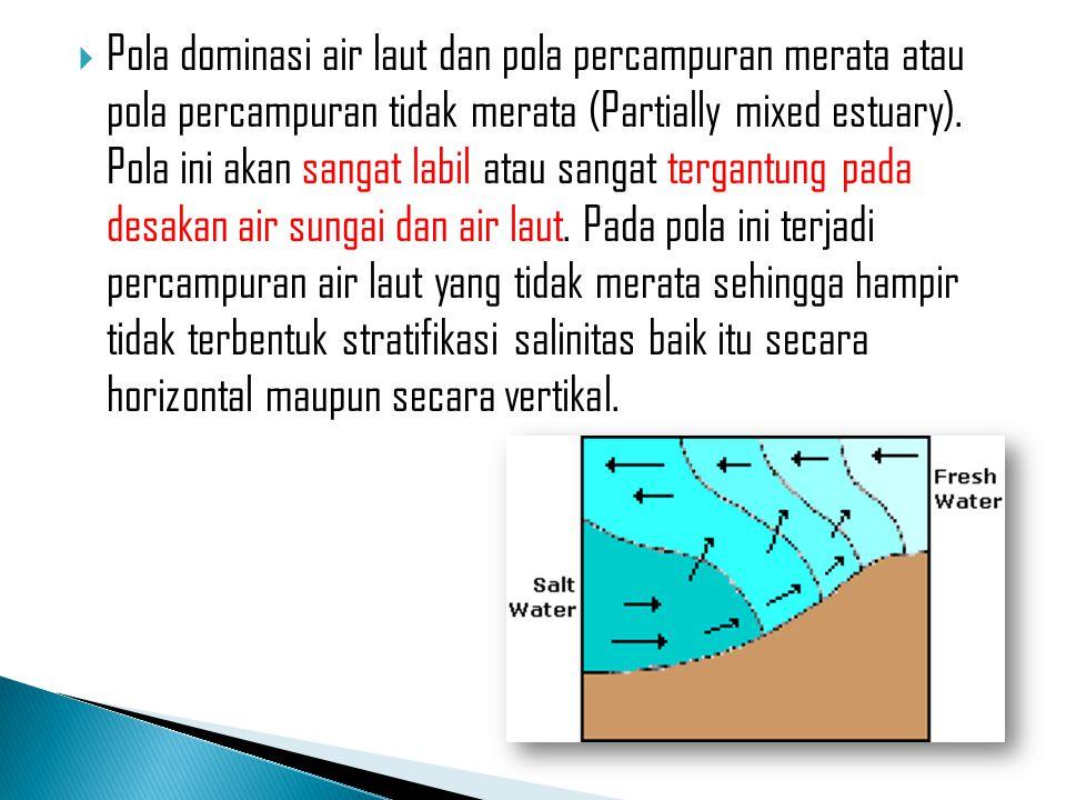  Pola dominasi air laut dan pola percampuran merata atau pola percampuran tidak merata (Partially mixed estuary). Pola ini akan sangat labil atau san