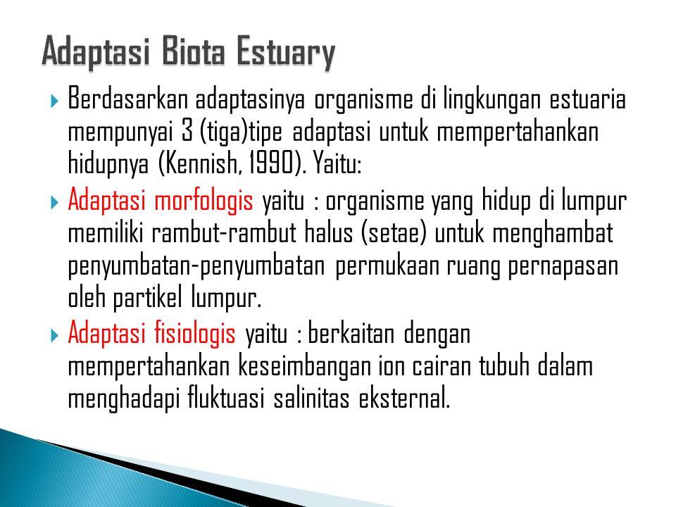  Berdasarkan adaptasinya organisme di lingkungan estuaria mempunyai 3 (tiga)tipe adaptasi untuk mempertahankan hidupnya (Kennish, 1990). Yaitu:  Ada