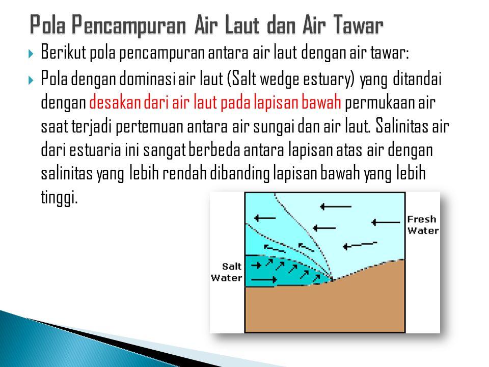  Berikut pola pencampuran antara air laut dengan air tawar:  Pola dengan dominasi air laut (Salt wedge estuary) yang ditandai dengan desakan dari ai