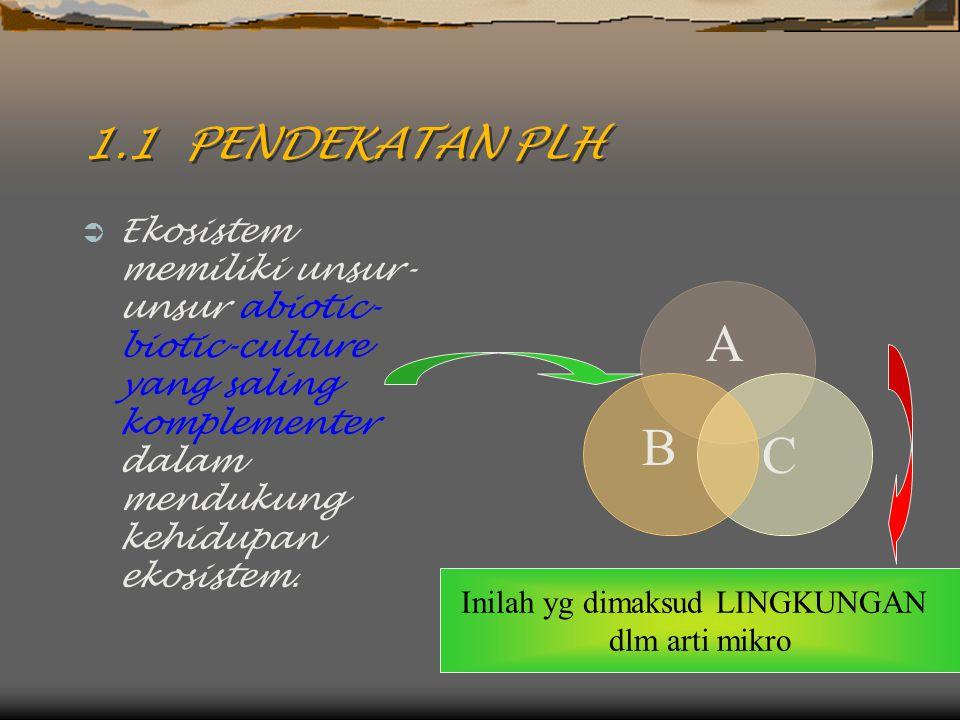 1.1 PENDEKATAN PLH  Ekosistem memiliki unsur- unsur abiotic- biotic-culture yang saling komplementer dalam mendukung kehidupan ekosistem. A B C Inila
