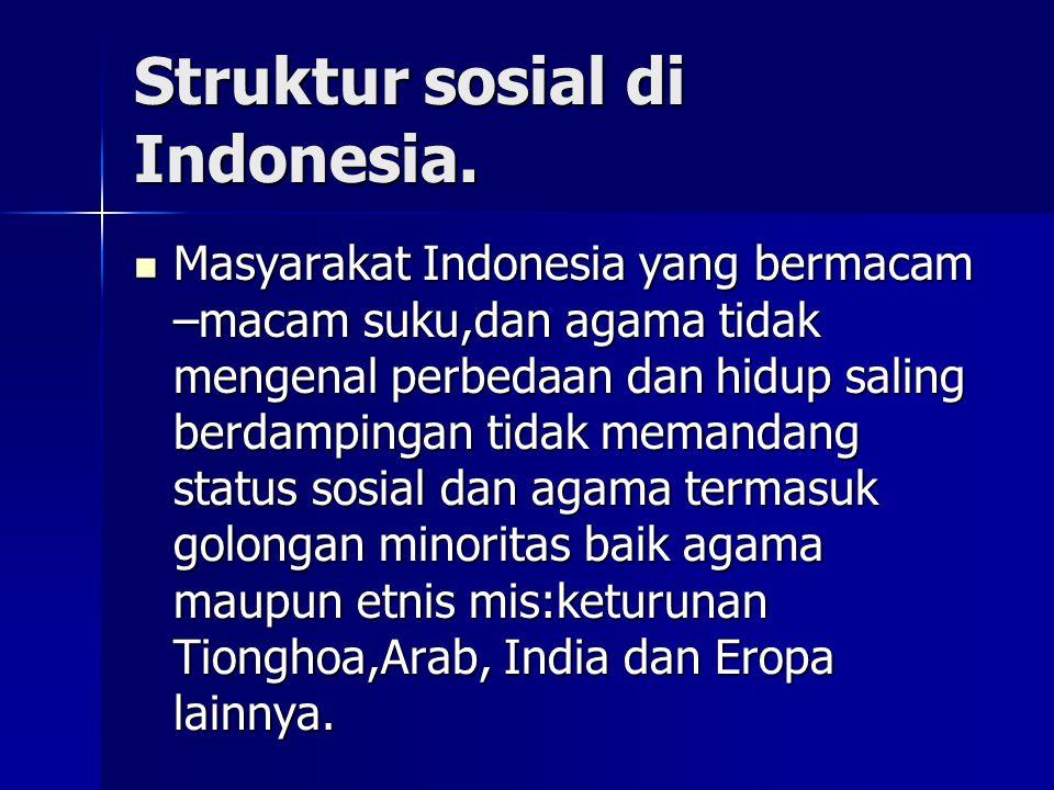 Struktur sosial di Indonesia. Masyarakat Indonesia yang bermacam –macam suku,dan agama tidak mengenal perbedaan dan hidup saling berdampingan tidak me