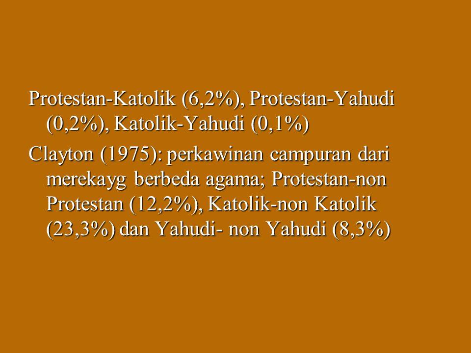 Protestan-Katolik (6,2%), Protestan-Yahudi (0,2%), Katolik-Yahudi (0,1%) Clayton (1975): perkawinan campuran dari merekayg berbeda agama; Protestan-no
