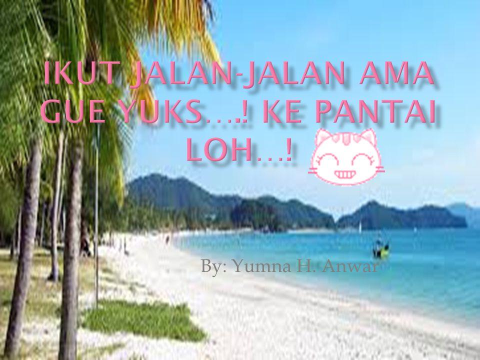 By: Yumna H. Anwar