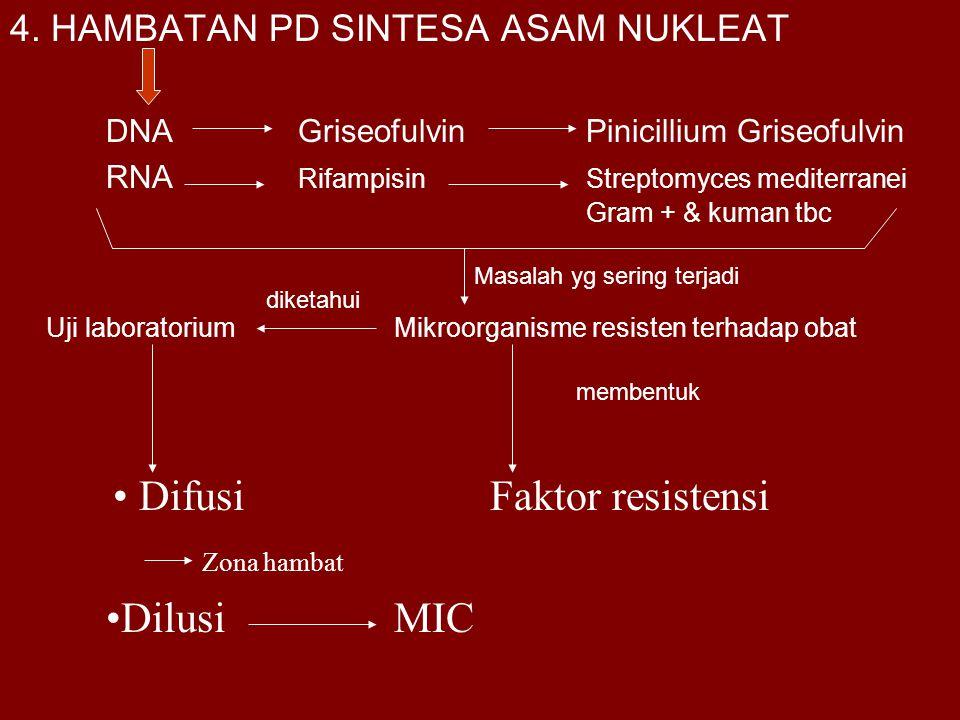 4. HAMBATAN PD SINTESA ASAM NUKLEAT DNAGriseofulvinPinicillium Griseofulvin RNA RifampisinStreptomyces mediterranei Gram + & kuman tbc Uji laboratoriu