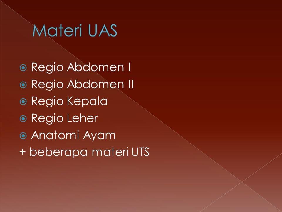  Regio Abdomen I  Regio Abdomen II  Regio Kepala  Regio Leher  Anatomi Ayam + beberapa materi UTS