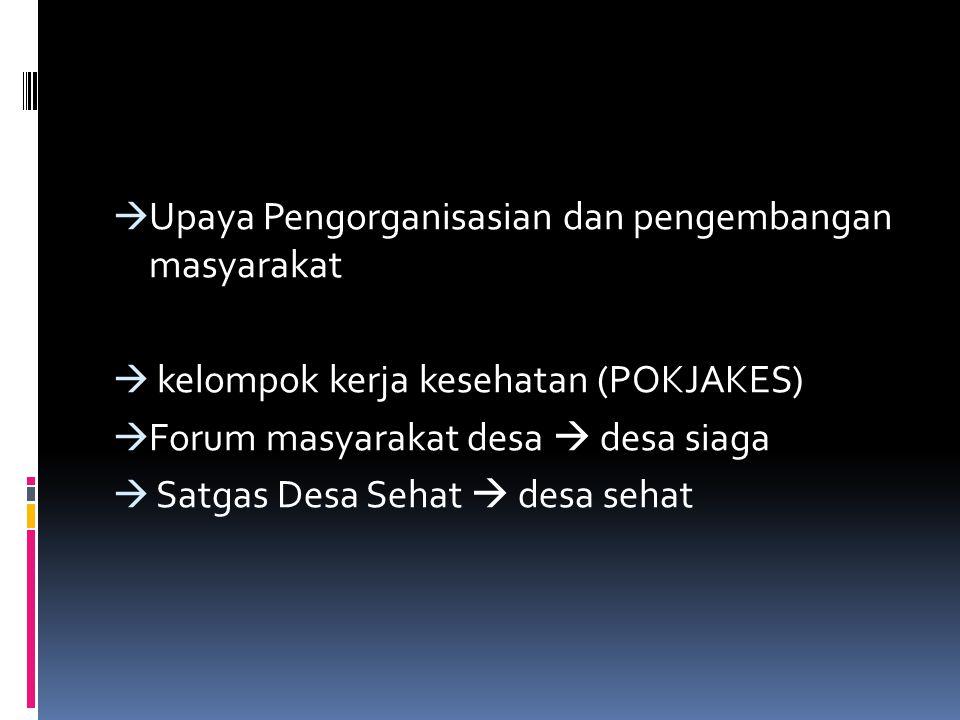  Upaya Pengorganisasian dan pengembangan masyarakat  kelompok kerja kesehatan (POKJAKES)  Forum masyarakat desa  desa siaga  Satgas Desa Sehat  desa sehat