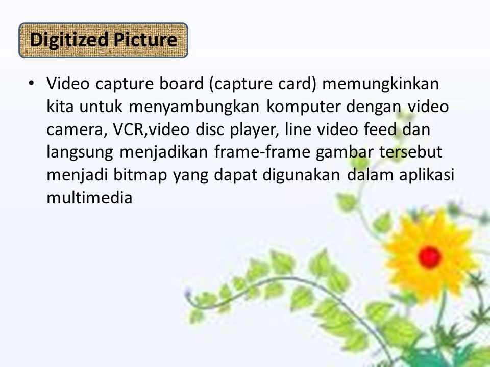 Digitized Picture Video capture board (capture card) memungkinkan kita untuk menyambungkan komputer dengan video camera, VCR,video disc player, line video feed dan langsung menjadikan frame-frame gambar tersebut menjadi bitmap yang dapat digunakan dalam aplikasi multimedia