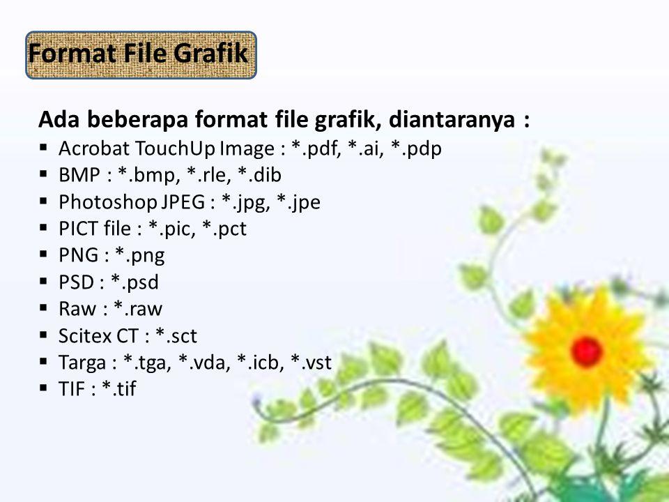 Ada beberapa format file grafik, diantaranya :  Acrobat TouchUp Image : *.pdf, *.ai, *.pdp  BMP : *.bmp, *.rle, *.dib  Photoshop JPEG : *.jpg, *.jpe  PICT file : *.pic, *.pct  PNG : *.png  PSD : *.psd  Raw : *.raw  Scitex CT : *.sct  Targa : *.tga, *.vda, *.icb, *.vst  TIF : *.tif Format File Grafik