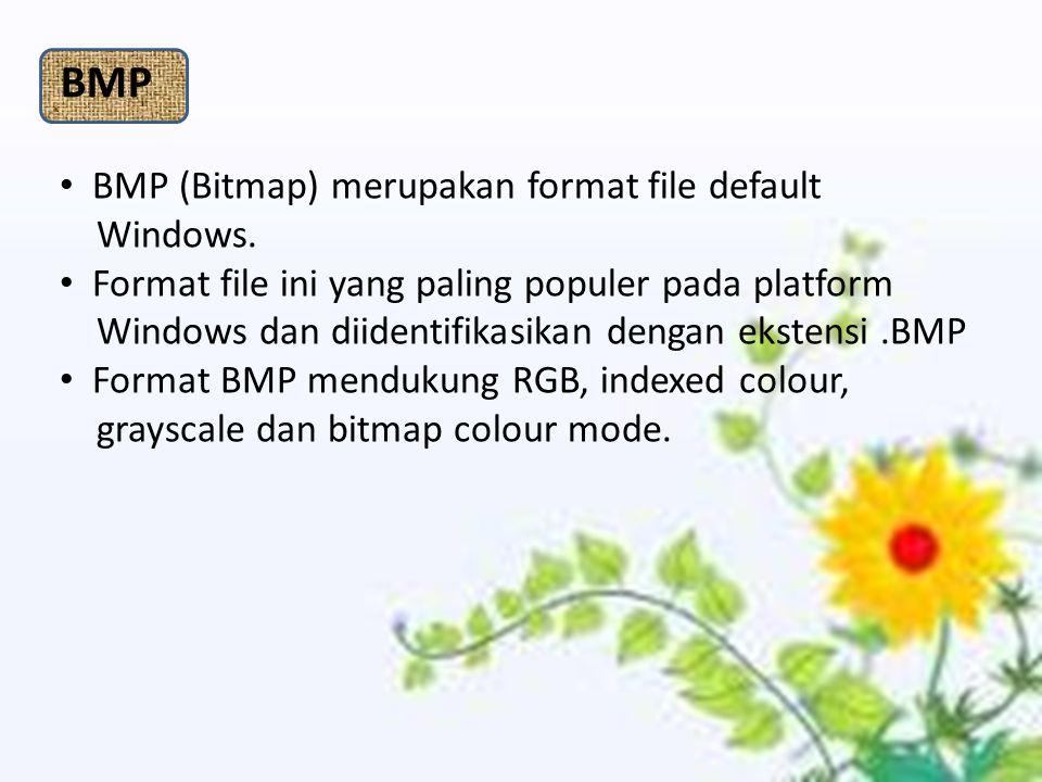 BMP (Bitmap) merupakan format file default Windows. Format file ini yang paling populer pada platform Windows dan diidentifikasikan dengan ekstensi.BM