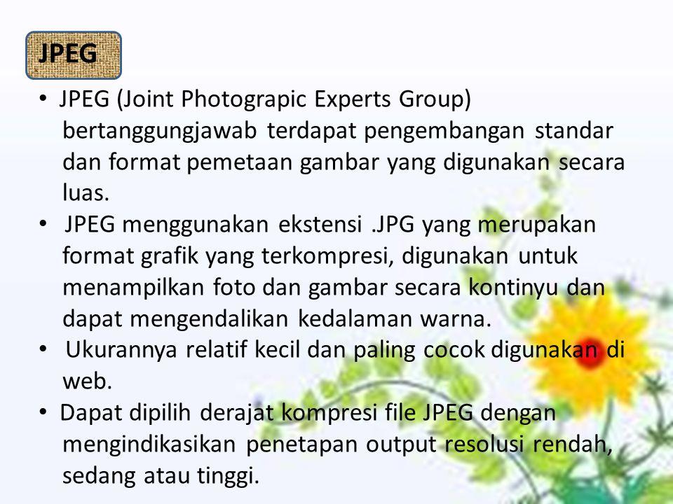 JPEG (Joint Photograpic Experts Group) bertanggungjawab terdapat pengembangan standar dan format pemetaan gambar yang digunakan secara luas. JPEG meng