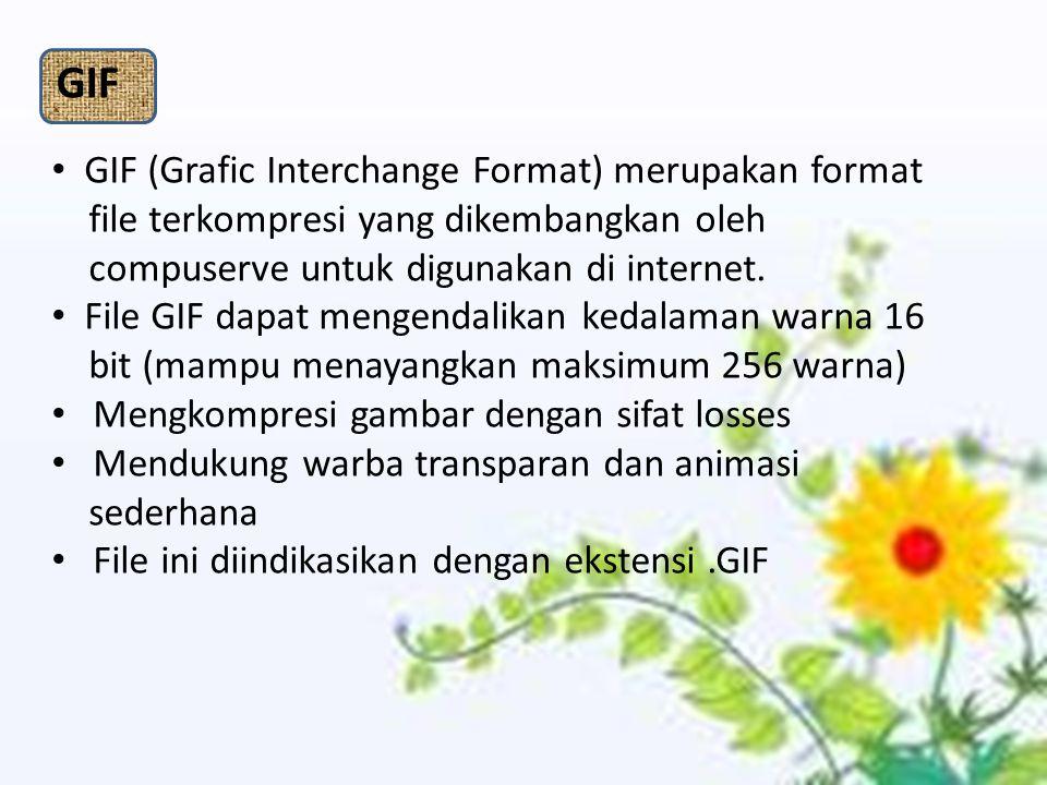 GIF (Grafic Interchange Format) merupakan format file terkompresi yang dikembangkan oleh compuserve untuk digunakan di internet. File GIF dapat mengen